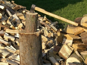 Спил, распил деревьев. Покол дров - Изображение #1, Объявление #1632838